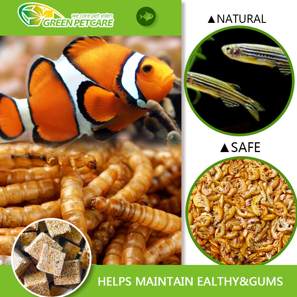 High Protein Bird Food And Fish Food Dried Mealworms