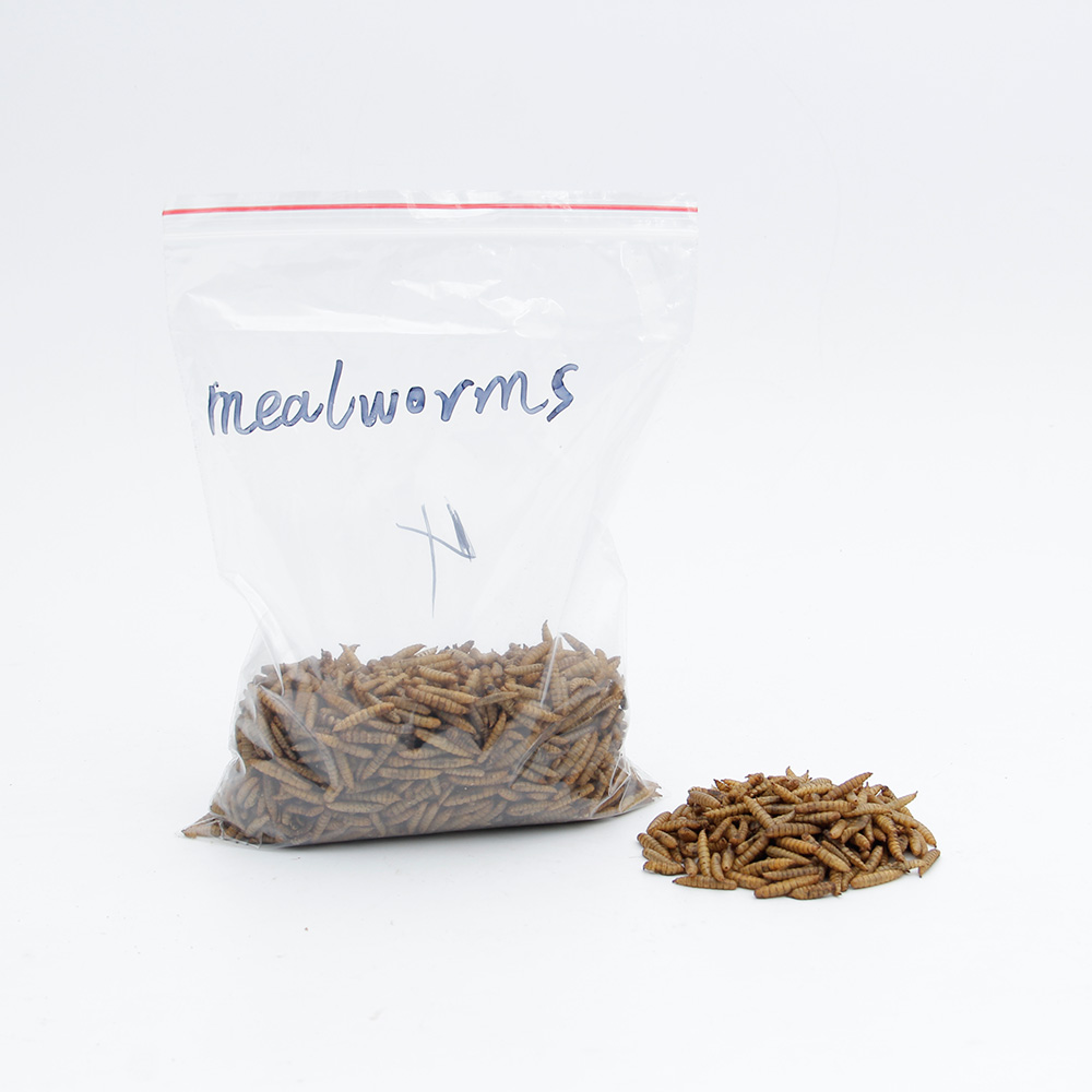 High Protein Mealworms Bird Food Mealworm Feed Pet Bird Seed