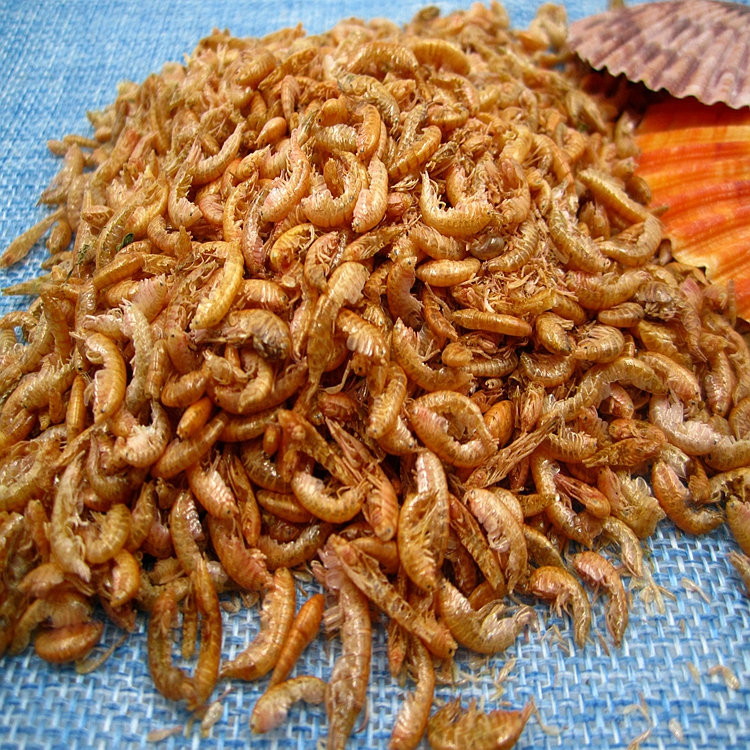 Dried Gammarus for Pet Fish Food High Nutrition