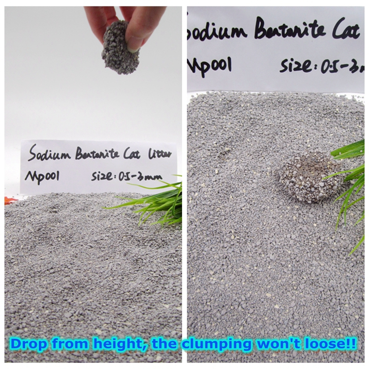 Best cheap bentonite cat litter