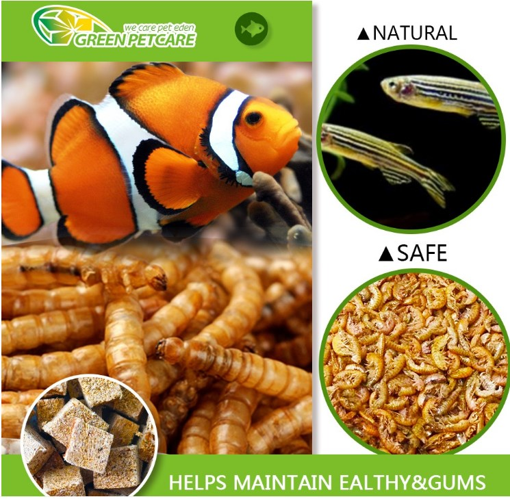 High Protein Microwave dried mealworms manufacturer for UK