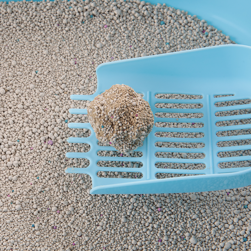 Good Water-absorbing Environmental Pet Bentonite Cat Litter in China