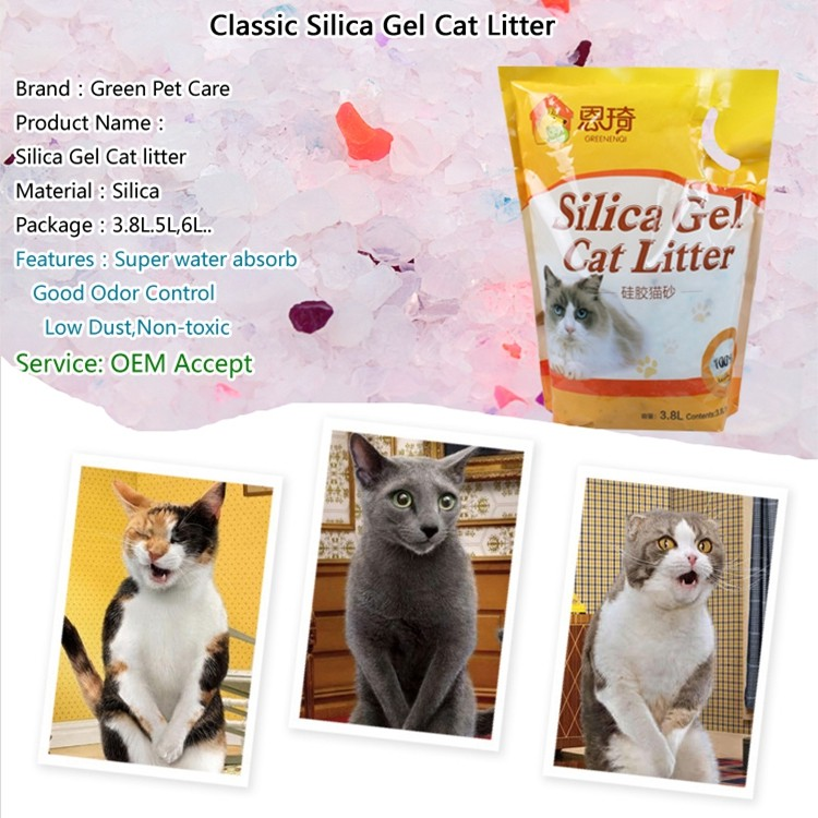 dust free cat litter.jpg