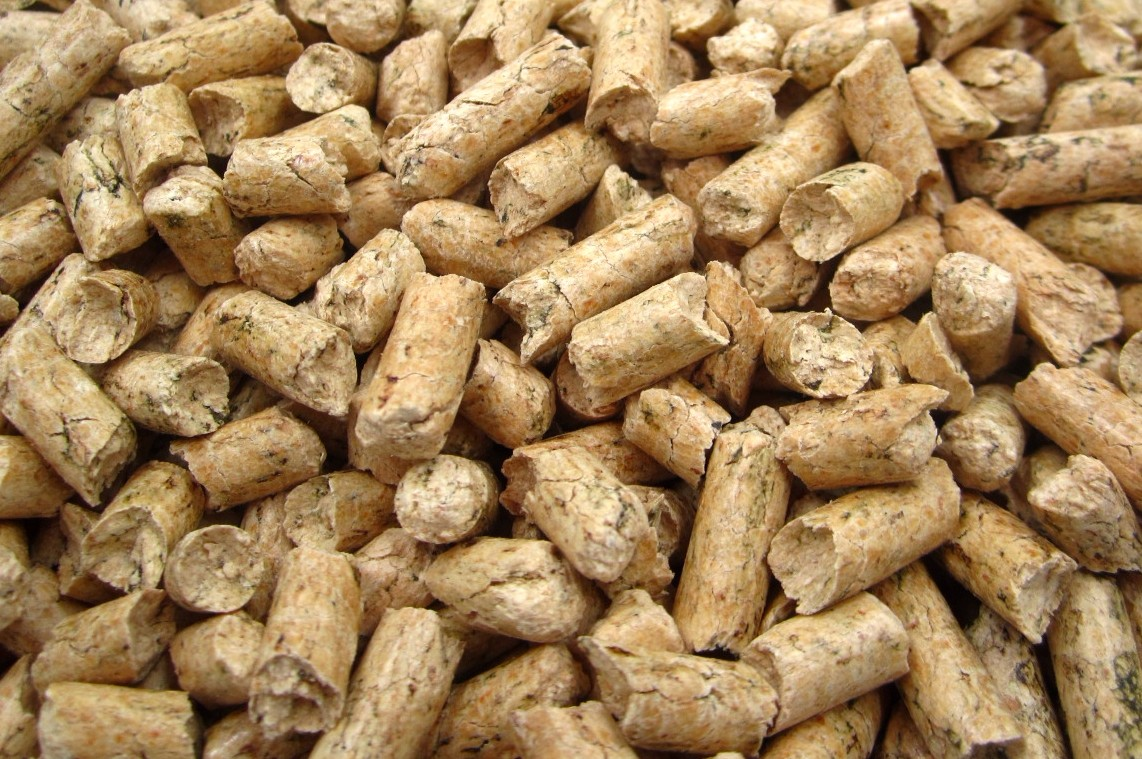 natural cat litter alternatives.jpg