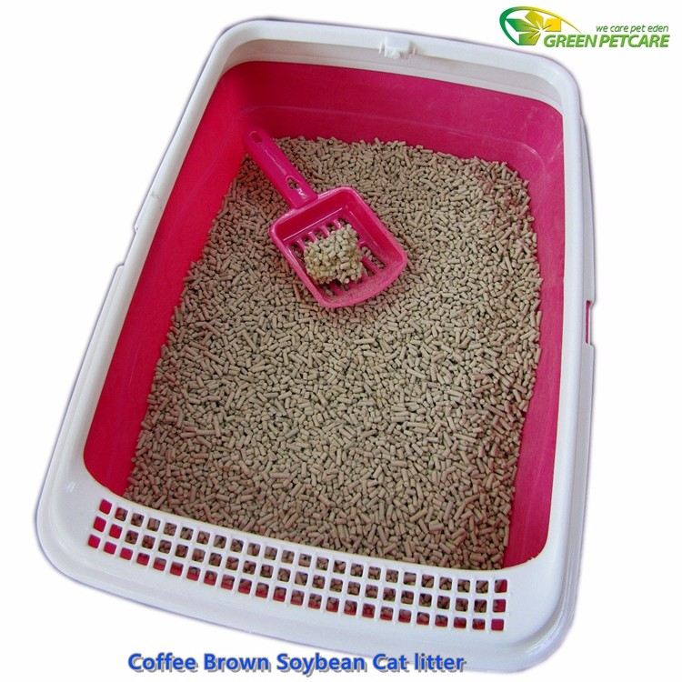 world best cat litter.jpg