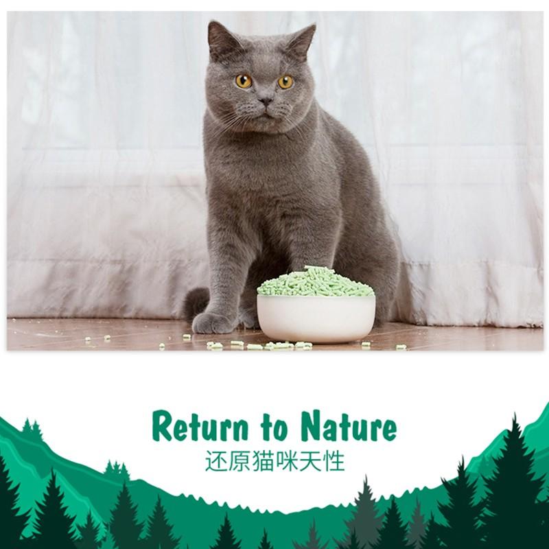 tofu-cat-litter.jpg