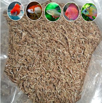 Freeze Dried Bloodworm Fresh Tropical Fish Discus Tetra Food Feeding