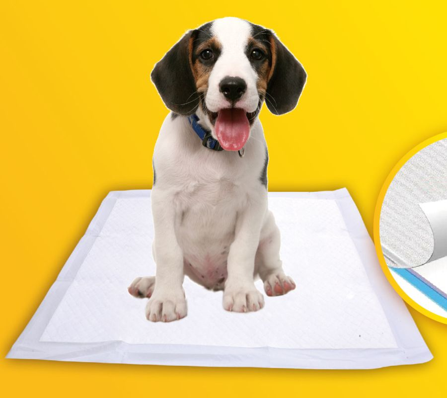 Disposable pet pads dog urine underpad puppy training pads   pet products wholesale