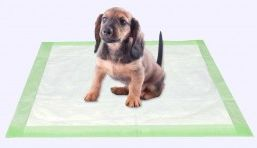 Puppy training pads wholesale in USA for dog indoor
