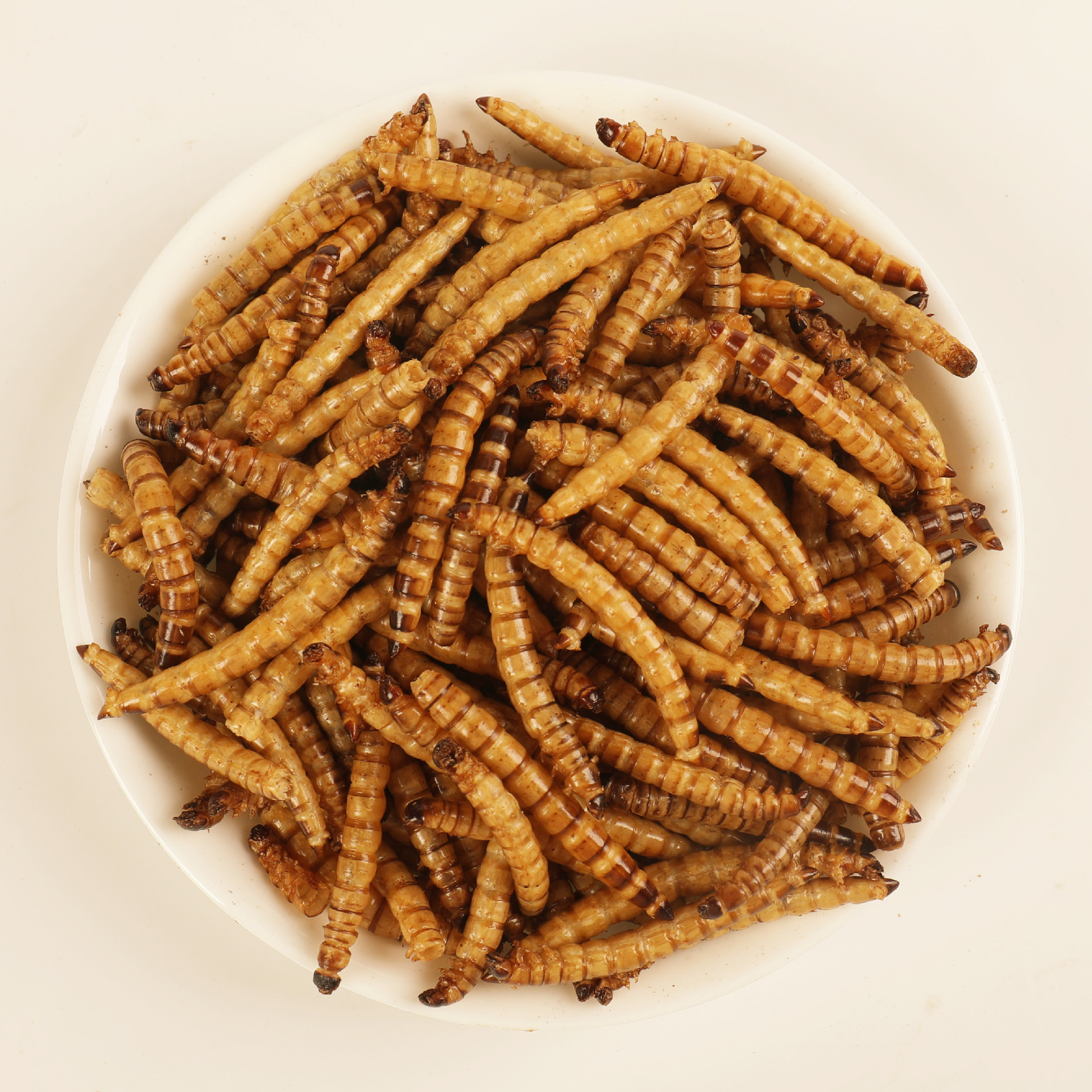 Dried Cricket Mealworm Grasshopper All Natural Pet Food